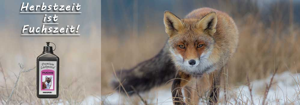 Hagopur Fuchs Lockmittel